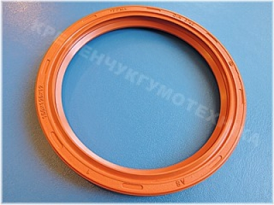 Манжета армированная 100x120x12 AS DIN 3760 FPM/KFM/Viton (WDR/Wellendichtringe)_product