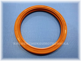 100x120x10-as-fpm-viton-din-3760-small.png_product