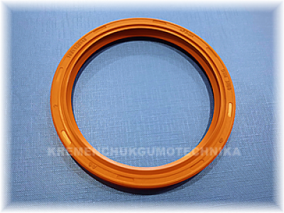 100x120x10-as-fpm-viton-din-3760-small.png