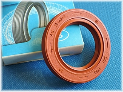 360-wdr-rss-as-30x47x7-fkm-din3760.jpg